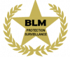 BLM SECURITY & SERVICES